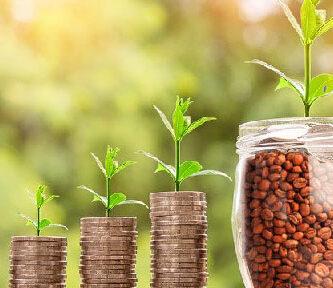 precio del café, precio del café en colombia, precio del café mexicano