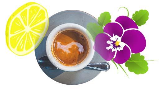 sabor en taza de café panameño, café de panamá, café en panamá