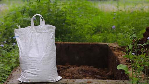 compost de guano para el cultivo de la planta de café